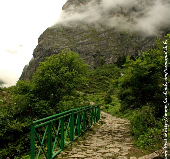 Clouds on the path going to valley of flowers in Himalyas
