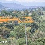 Anti Poaching Camp – Patrolling Bandipur National Park