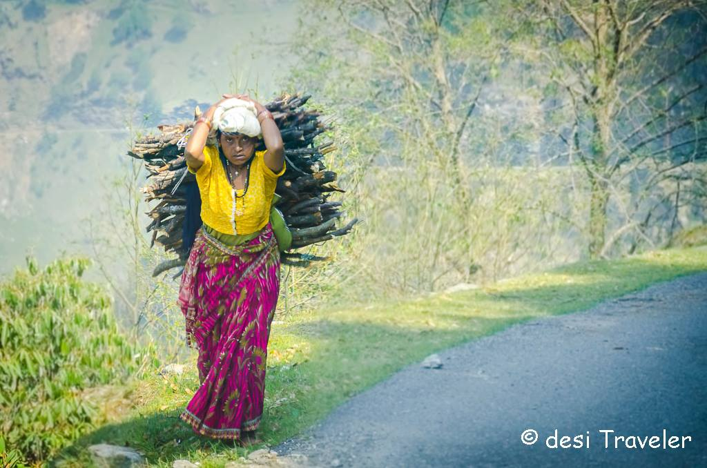 Woman carrying fire wood hills india
