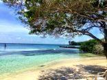 praia-isla-grande-cartagena