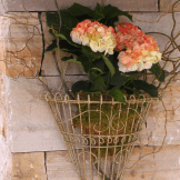 Wedding Decor Rentals Denver-vases