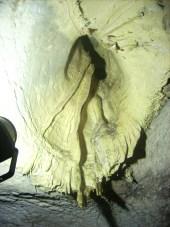 Ухото на пещерата
