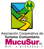 logotipo-mucusur_color-021