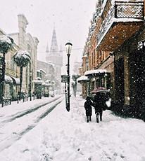 batumi_palm_snow