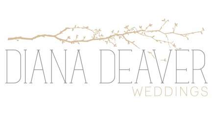 diana deaver weddings charleston wedding photographer