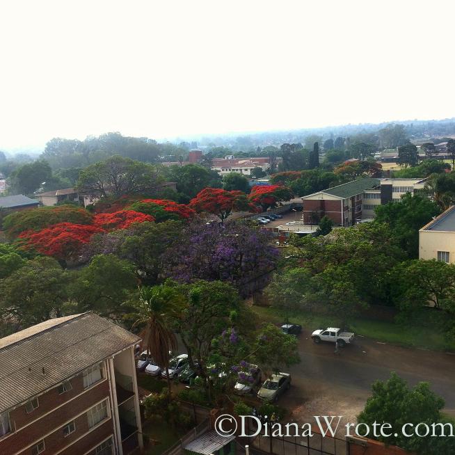 World Vision Zimbabwe 2014-5