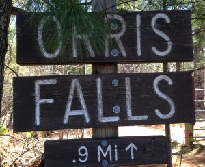 Although the hike to Orris Falls is a short mile from the trailhead, walkers can get in a good four to five mile hike within the Orris Falls Conservation Area