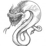 dibujos a lapiz de dragones (1)