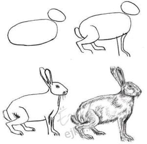 Dibujos a lápiz para principiantes (6)