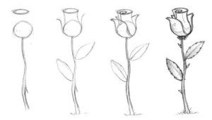 Primeros pasos en el dibujo a lápiz (11)