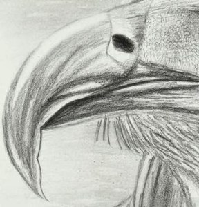 15 opciones de dibujos a lápiz complejos (2)