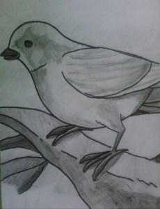 15 opciones de dibujos a lápiz muy creativos (5)