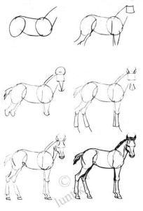 11 Nuevos dibujos a lápiz para principiantes (5)