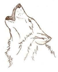 10 nuevos dibujos a lápiz de animales (9)