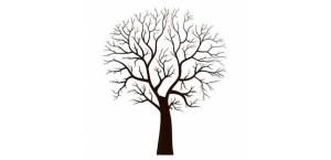 11 Nuevos dibujos a lápiz de árboles (5)