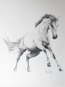 11 dibujos a lápiz de caballos (1)