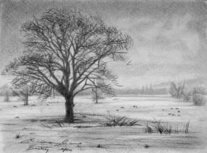 10 Dibujos a lápiz de paisajes (3)
