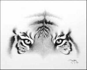 10 dibujos a lapiz de animales (5)