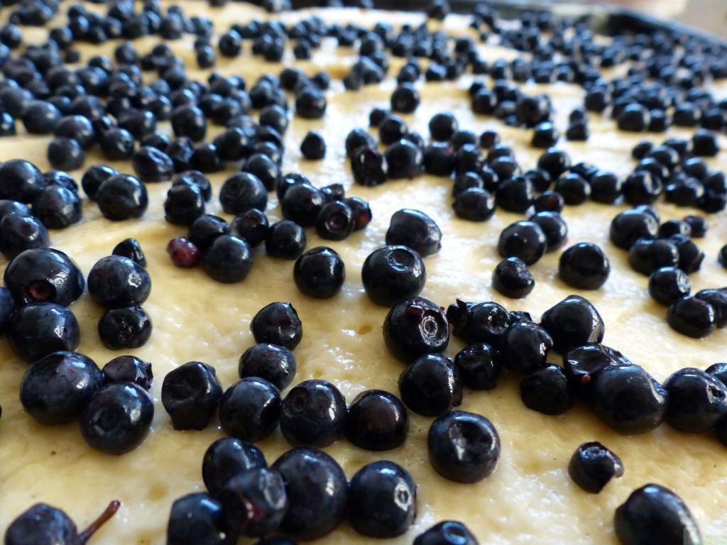 favorite fruit flan 10 © www.dieblauenstunden.com