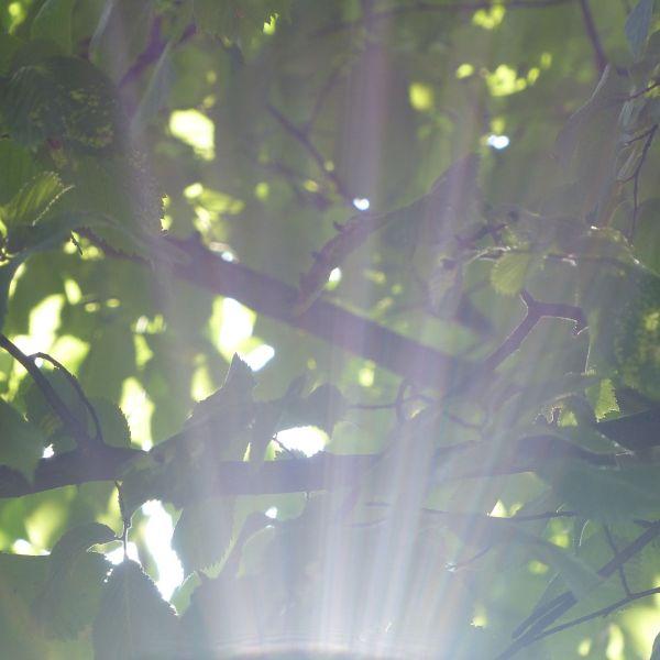 summer time 18 © www.dieblauenstunden.com