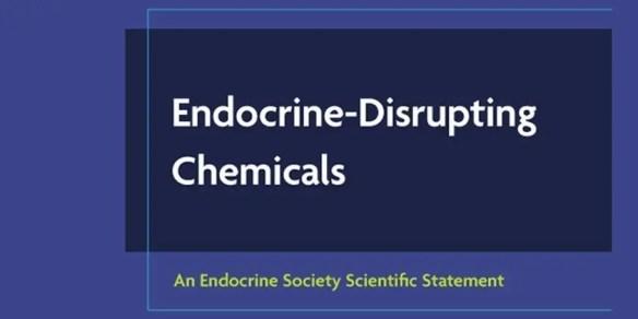 EDC-statement banner