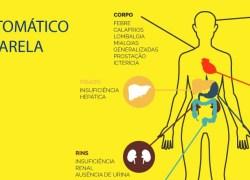 Ministério da Saúde lança campanha com orientações sobre a vacinação contra a febre amarela