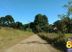Moradores do Vale dos Vinhedos pedem melhorias em estradas de chão