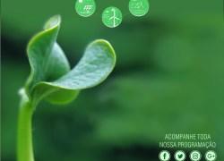 Bento Gonçalves tem programação alusiva a Semana do Meio Ambiente