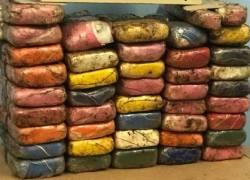Brigada Militar apreende 42,5 quilos de cocaína em Rolante