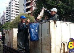 Feira do Peixe Vivo na Semana Santa comercializa cerca de 15 toneladas em Bento
