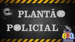 Plantão