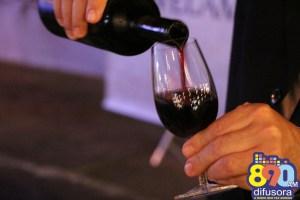 dia do vinho (138)
