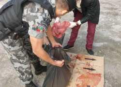 Operação resulta em apreensão de carne clandestina em São Sebastião do Caí