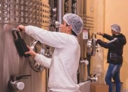 Avaliação Nacional de Vinhos: Amostras já estão sendo coletadas
