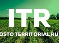 Produtores rurais já podem entregar a Declaração do ITR