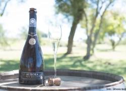 Vinícola Aurora leva seus vinhos e azeite premiados ao maior evento enogastronômico da América Latina