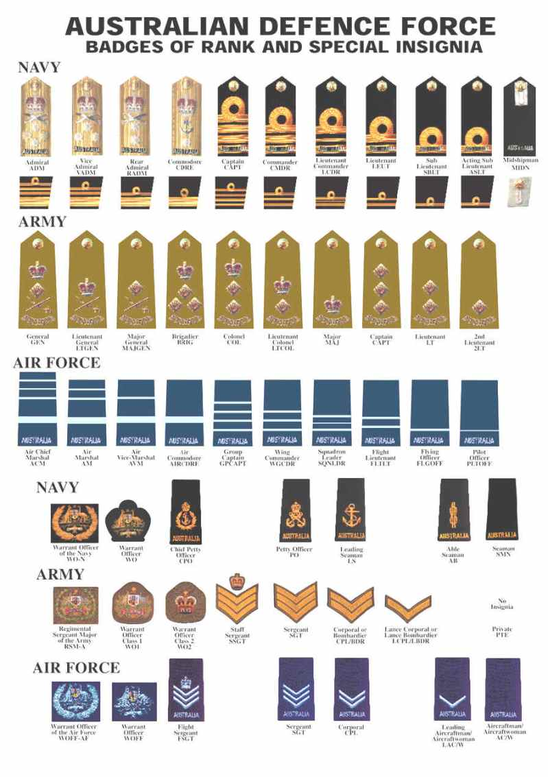 Large Of What Is The Highest Military Rank Achieved By A Dog