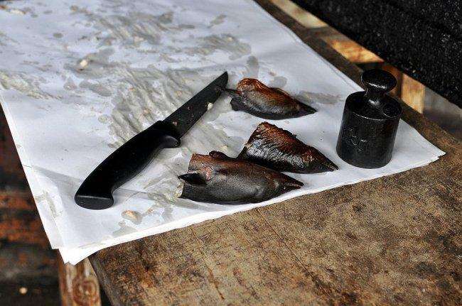 eel heads