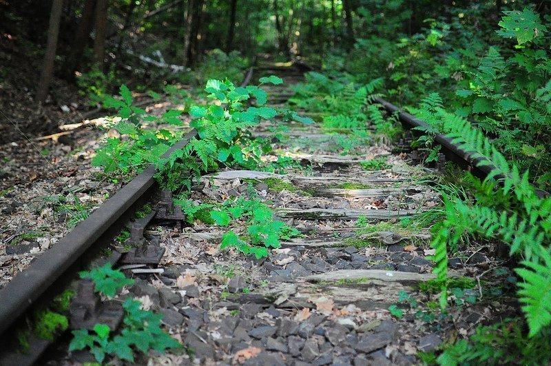 abandoned sbahn tracks dreilinden friedhofsbahn  germany