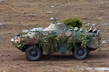 Serbian Army ,military exercise Odlucan Odgovor 2009, Serbia, Pesterska visoravan, Oktobar 2009 © www.dimitrijeostojic.com