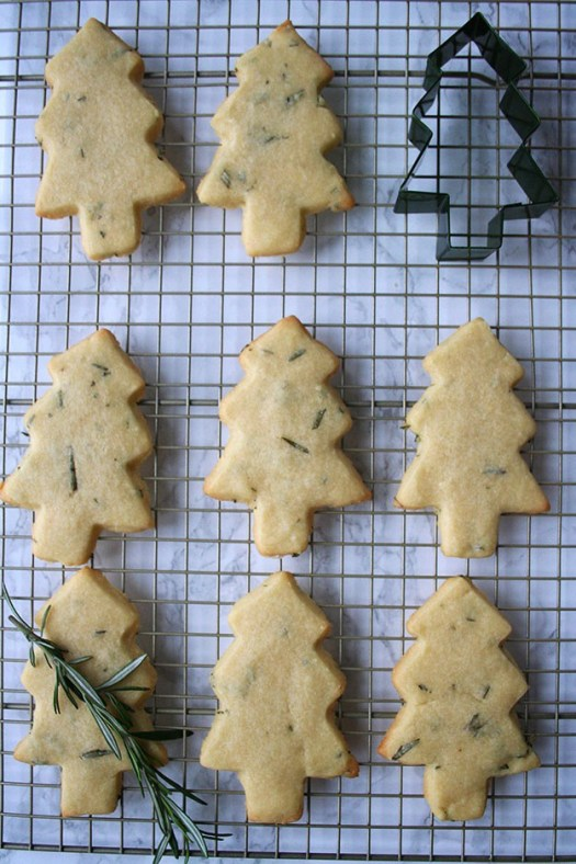 rosemary-shortbread-christmas-tree-cookie-cutter