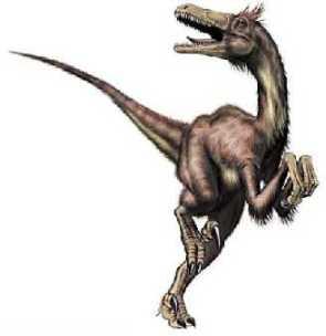 """L'image """"http://i2.wp.com/dinonews.net/images/dinos/velociraptor2.jpg?resize=295%2C304"""" ne peut être affichée car elle contient des erreurs."""