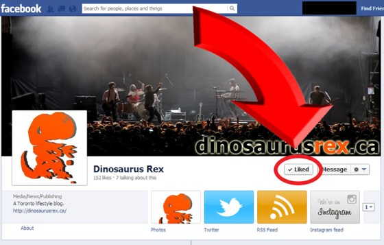 'Like' the Dinosaurus Rex Facebook Page