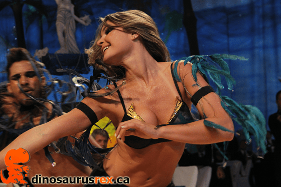 Brazilian Carnival Ball