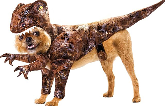 dino-love-pets-in-costume-raptor-costume-dog-show-dog-outfit