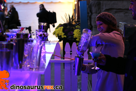 Ice, Wine & Dine - Wiinter Magic Festival