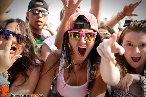 VELD MUSIC FESTIVAL 2014
