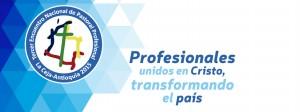 dioc-congresonalpprof