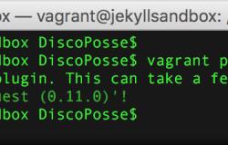 vagrant-install-plugin-vagrant-vbguest