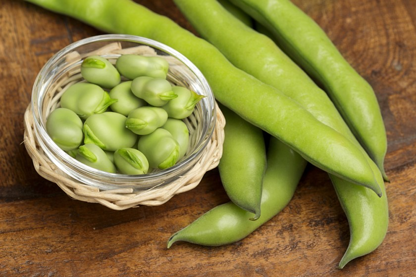 fava beans - 7 Spring Fruits & Vegetables